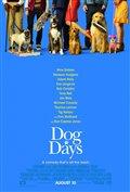 Dog Days Photo