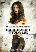 Maze Runner: The Scorch Trials Photo