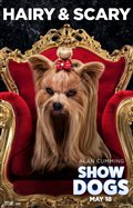 Show Dogs Photo