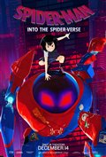 Spider-Man: Into the Spider-Verse Photo