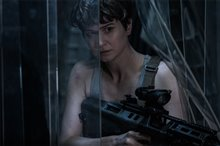 Alien: Covenant photo 6 of 25