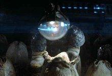 Alien: The Director's Cut Photo 6 - Large