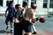 Along Came Polly Photo 12