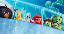 Angry Birds : Le film 2 Photo 14