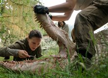 Annihilation Photo 1