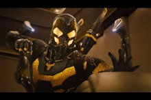 Ant-Man photo 16 of 49