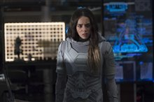 Ant-Man and The Wasp Photo 20