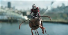 Ant-Man et la Guêpe Photo 10