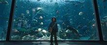 Aquaman Photo 13
