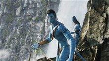 Avatar Photo 9
