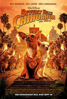 Beverly Hills Chihuahua Photo 15