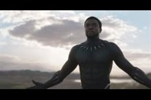 Black Panther Photo 1 - Large