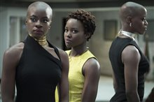 Black Panther Photo 3