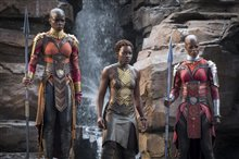 Black Panther Photo 7