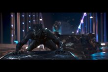 Black Panther Photo 8