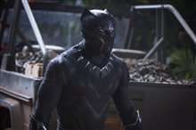 Black Panther Photo 17