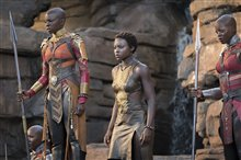 Black Panther Photo 22
