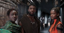 Black Panther Photo 26