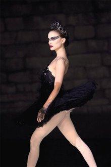 Black Swan Photo 11