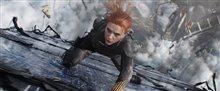 Black Widow Photo 13