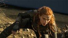 Black Widow (v.f.) Photo 9