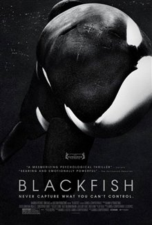 Blackfish photo 4 of 4