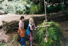 Bridge to Terabithia Photo 15