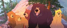 Brother Bear Photo 4 - Large