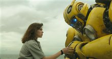 Bumblebee Photo 10