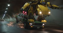 Bumblebee Photo 28