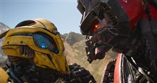 Bumblebee Photo 34