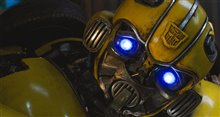 Bumblebee (v.f.) Photo 24