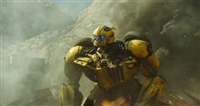 Bumblebee (v.f.) Photo 32