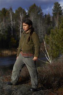Cheval indien Photo 13
