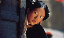 Crouching Tiger, Hidden Dragon Photo 13