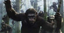 Dawn of the Planet of the Apes 3D photo 1 of 14