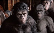 Dawn of the Planet of the Apes 3D photo 9 of 14