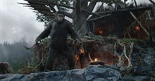 Dawn of the Planet of the Apes 3D photo 12 of 14