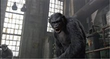 Dawn of the Planet of the Apes Photo 8