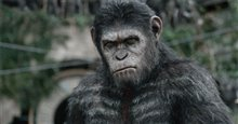 Dawn of the Planet of the Apes Photo 11