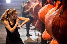 Divergent Photo 10