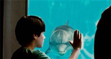 Dolphin Tale photo 4 of 32