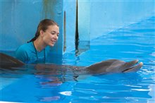 Dolphin Tale photo 13 of 32