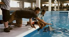 Dolphin Tale Photo 29