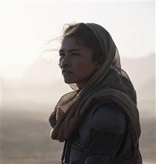 Dune Photo 26
