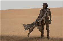 Dune Photo 5