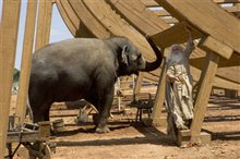 Evan Almighty Photo 9