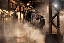 Fantastic Beasts and Where to Find Them photo 1 of 63