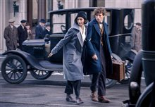 Fantastic Beasts and Where to Find Them photo 3 of 63