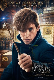 Fantastic Beasts and Where to Find Them photo 53 of 63